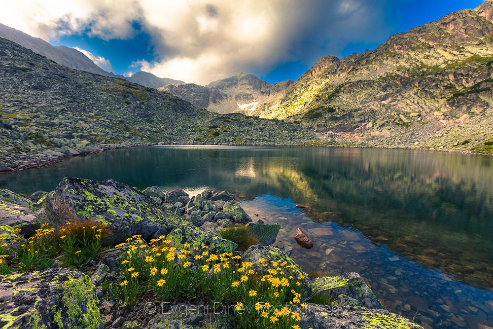 Musala lake
