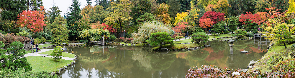 Fall foliage colors, pond. The Seattle Japanese Garden was completed in 1960 within UW's Washington Park Arboretum. Address: 1075 Lake Washington Blvd E, Seattle, Washington 98112, USA.