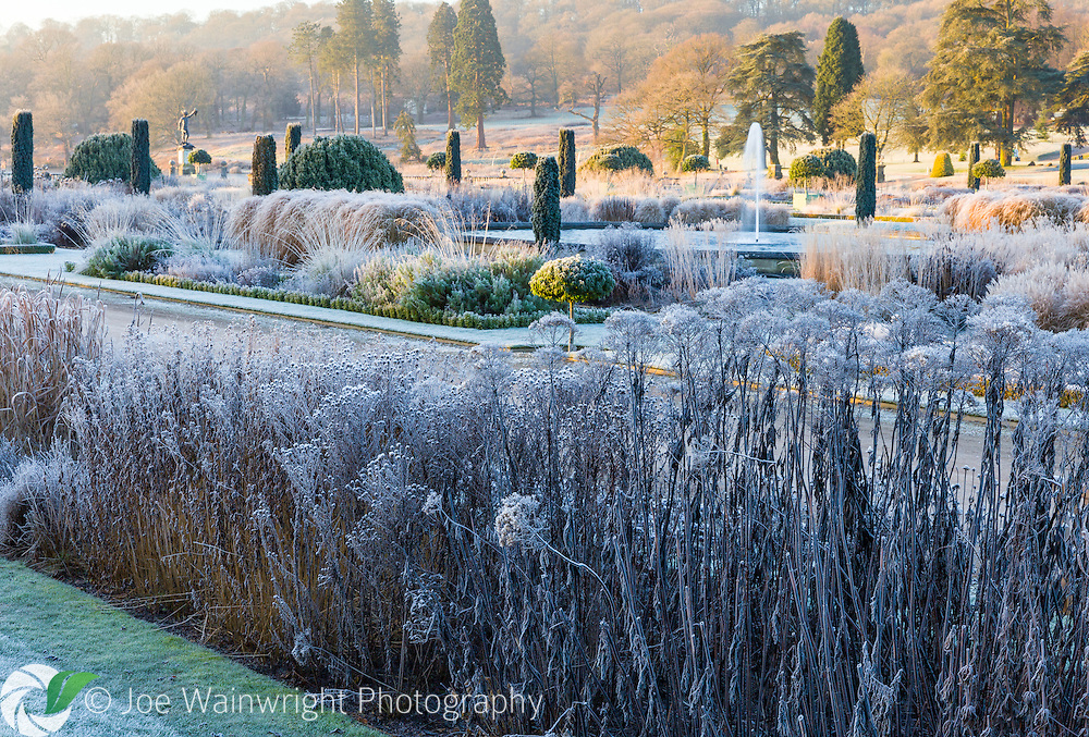 The Italian Garden at Trentham Gardens, Staffordshire, frosted on a freezing January morning. It was designed by Tom Stuart-Smith.