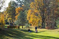 BILTHOVEN - Golf - Hole 8, Golfpark De Biltse Duinen.  COPYRIGHT KOEN SUYK