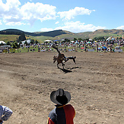 Cameron MacDonald from Southland feels the force of Ringo the Bull who throws him and kicks him in the ribs during the Millers Flat Rodeo. Otago, New Zealand. 26th December 2011