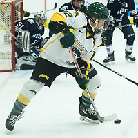 2nd year forward Chelsea Hallson (12) of the Regina Cougars in action during the Women's Hockey home game on October 14 at Co-operators arena. Credit: Arthur Ward/Arthur Images