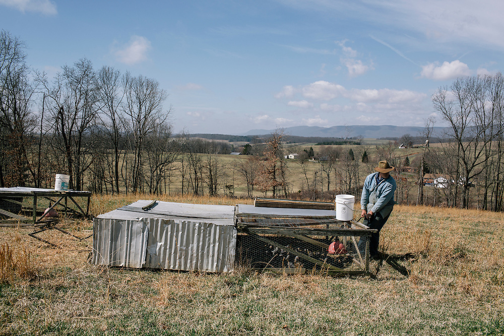 SWOOPE, VA - MARCH 26 Pasture-based farmer Joel Salatin shifts chicken housing to fresher grass at Polyface Farms in Swoope, Va. on March 26, 2015. Salatin is one of the heroes of the sustainable-food movement, and he appeals to both left- and right-wing audiences.  (Photo by Greg Kahn/GRAIN for The Washington Post)