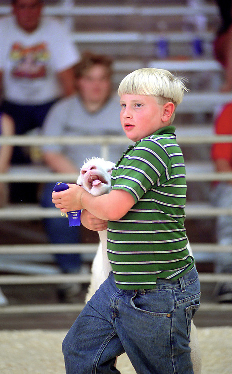 A boy controls his lamb and carries his blue ribbon he won during the county fair sheep judging competition