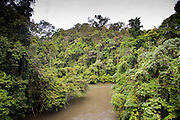 Temburong river in Ulu Temburong National Park, Brunei