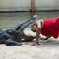 Samut Prakarn Crocodile Farm and Zoo (???????????)