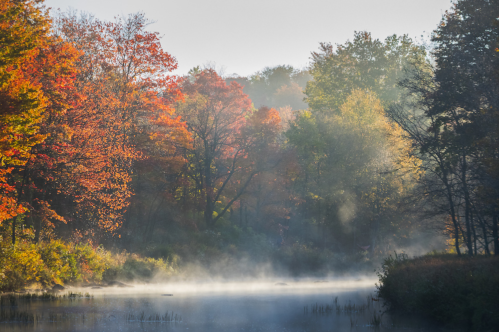 Sun light burns the morning mist off the Blackwater River on a crisp autumn morning in the Little Canaan Wildlife Management Area of West Virginia.