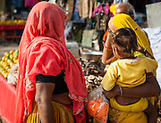 Women in saris shopping at local market (India)
