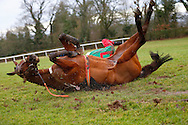 Plumpton, UK, 16th January 2017<br /> Tom O'Brien parts company with Talk Of The South during the jasonhallracing.com 'Sharing Success' Handicap Chase at Plumpton Racecourse.<br /> &copy; Telephoto Images / Alamy Live News