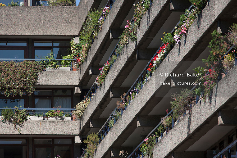 Flowers growing on balconies of apartments at the Barbican in the City of London, UK.