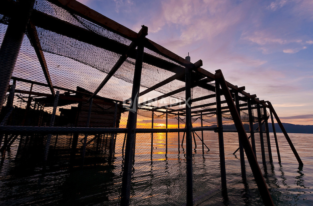 Sea cucumber mariculture cages at Pak Sony's retreat, iris Strait, Kaimana area, Papua