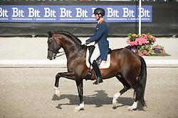 Van Silfhout Diederick, (NED), Arlando<br /> Kingsley Donadeo Grand Prix<br /> Dutch Championship Dressage - Ermelo 2015<br /> © Hippo Foto - Dirk Caremans<br /> 17/07/15