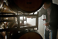 Paul Hobbs taking barrel sample of Pinot Noir, Sebastopol, Sonoma County, California