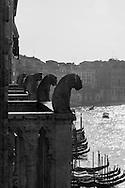 Italy. Venice elevated view. the Grand Canal, Grand Canal.  Venice - Italy  view from CA D ORO palace on the Grand Canal. / le grand canal   Venise - Italie vue depuis la CA D ORO palais de style gothique, le long du grand canal