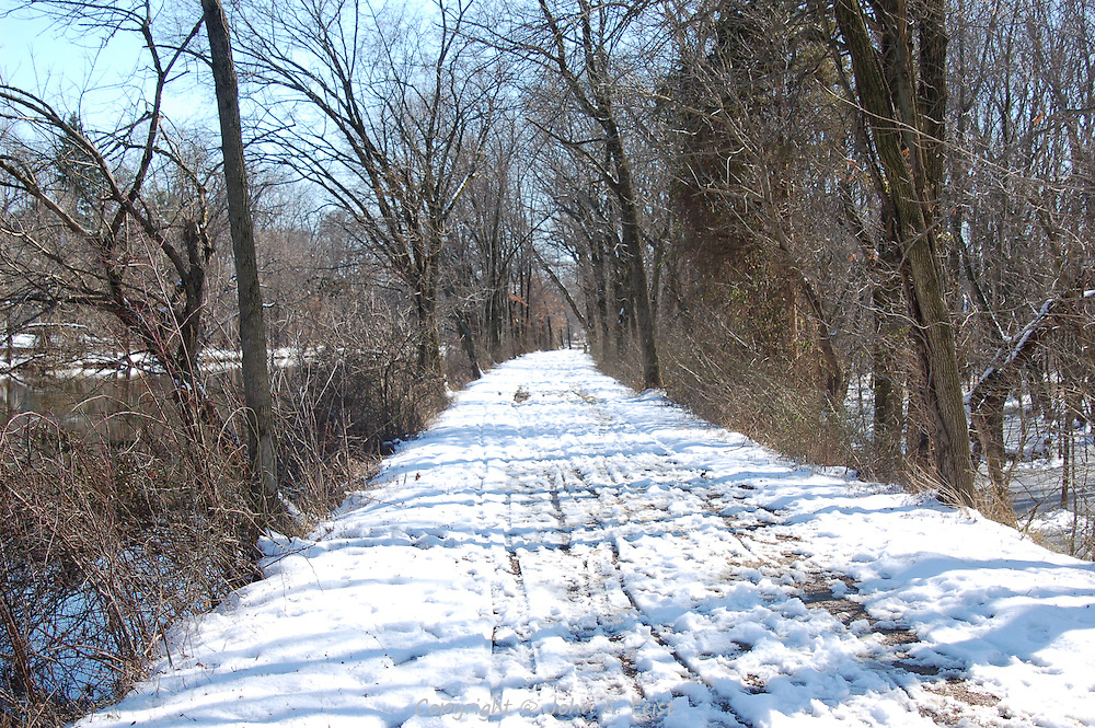 On a cold clear winter's day along the D and R Canal in Hillsborough, NJ.  The tracks in the snow are testimony to how many people enjoy this park.