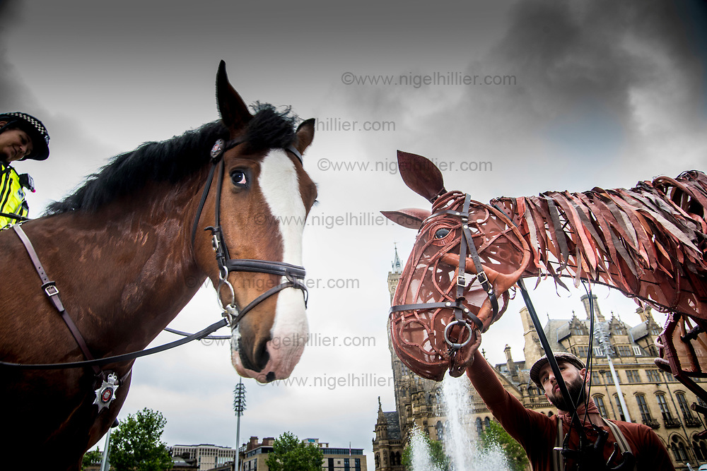 On Tuesday 20 June, 2017 at 10.30am, Joey, the life-size equine puppet from War Horse will make a<br /> special appearance in Bradford&rsquo;s City Park and will meet real horses from the West Yorkshire Police<br /> Mounted Section. One of the police horses is also called Joey (AKA Joseph), and there will be an<br /> opportunity to film and photograph puppet-horse and real horses meeting.<br /> Chief Inspector Chris Bowen, who oversees the West Yorkshire Police&rsquo;s Mounted Section said<br /> &ldquo;War Horse highlights the bond and friendship between Joey and Albert, and as officers in the<br /> Mounted Section we feel we have the same unique bonds with our own horses. Whilst not out on a<br /> battle field during WW1, the horses and officers in our mounted section are often deployed to the<br /> front line of policing where they detect crimes, make arrests and help locate vulnerable people.<br /> We are delighted to be invited to take part in today&rsquo;s launch and bring our own Joey along to meet<br /> the equine puppet from the show. We regularly bring the team to Bradford on patrol and hope that<br /> people will come down and say hello whilst we&rsquo;re in the City Centre.&rdquo;