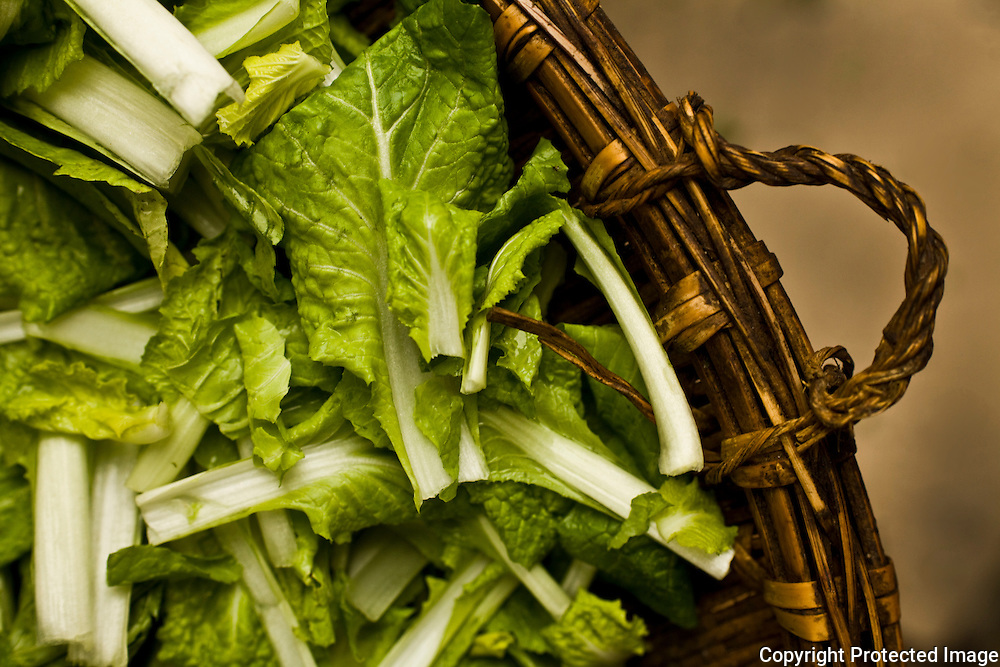fresh greens in a sichuan market