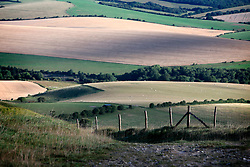 UK ENGLAND 29JUL17 - Landscape in the South Downs National Park, England.<br /> <br /> <br /> <br /> jre/Photo by Jiri Rezac<br /> <br /> <br /> <br /> © Jiri Rezac 2017