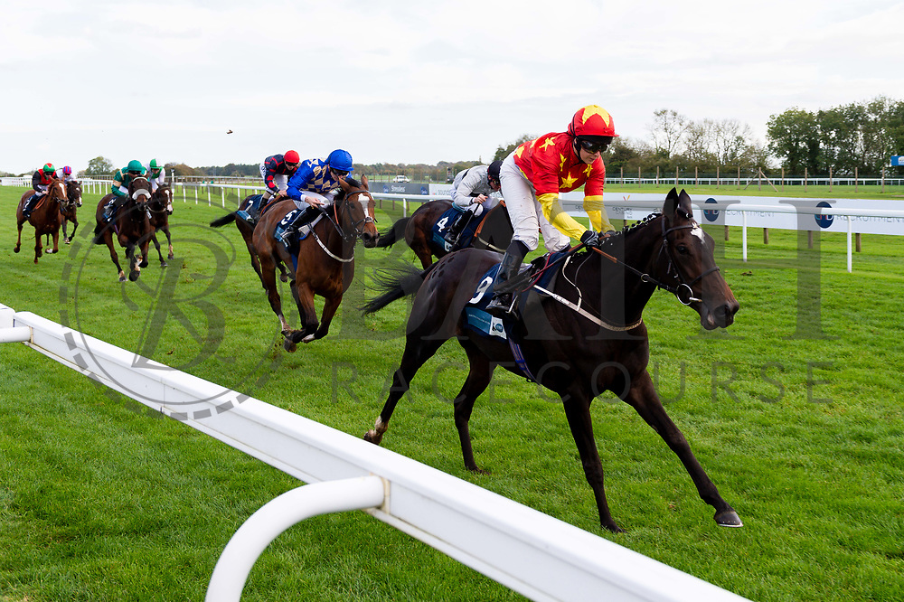 Sapa Inca ridden by Hayley Turner and trained by M Johnston - Ryan Hiscott/JMP - 16/10/2019 - PR - Bath Racecourse - Bath, England - Race Meeting at Bath Racecourse
