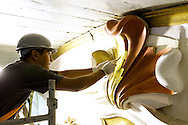 Fotos das obras de Restauro da Igreja da Ordem Terceira de São Francisco, realizadas no mês de fevereiro de 2014. Douramento: elementos decorativos e medalhão nave. São Paulo, 19 de fevereiro de 2014. Foto Daniel Guimarães