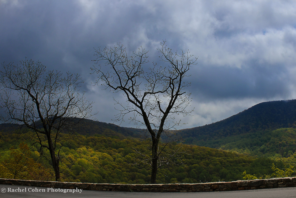 &quot;Storm at Gooney Manor&quot;<br /> <br /> Gooney Manor overlook along Skyline Drive. A scenic and stormy spring view of the Blue Ridge Mountains!!<br /> <br /> The Blue Ridge Mountains by Rachel Cohen