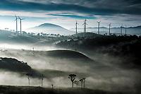 Misty morning landscape with Ambawela wind farm in the distance, Sri Lanka