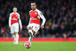 Theo Walcott of Arsenal in action - Mandatory byline: Jason Brown/JMP - 07966386802 - 09/01/2016 - FOOTBALL - Emirates Stadium - London, England - Arsenal v Sunderland - The Emirates FA Cup