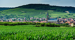 The village of Westhoffen surrounded by vineyards in the foothills of the Vosges Mountains in Alsace, France.<br /> <br /> (c) Andrew Wilson | Edinburgh Elite media