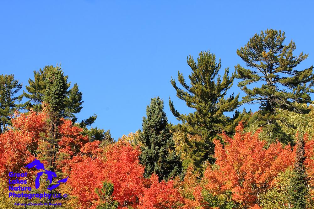 Autumn in the Keweenaw