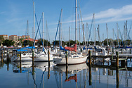 Boats are tied up at a Florida marina on a February morning.