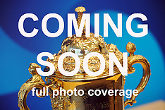 Wellington-Rugby World Cup trophy