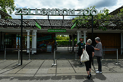© Licensed to London News Pictures. 15/06/2020. LONDON, UK. Visitors at the entrance gate on the reopening day of ZSL London Zoo, the first day that the zoo has been open to the public since March following the coronavirus pandemic lockdown.  The UK government has relaxed Covid-19 restrictions allowing non-essential shops, zoos and safari parks to reopen to the public from 15 June.  Photo credit: Stephen Chung/LNP