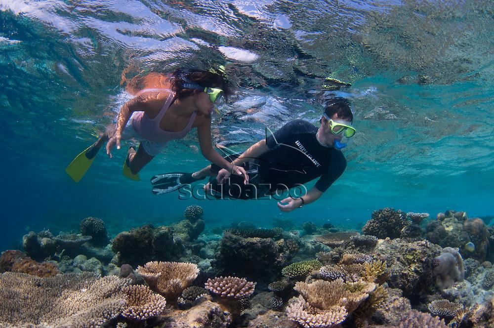 Couple snorkelling over coral reef, Angsana Maldives Ihuru, North Male Atoll, The Maldives