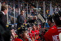KELOWNA, BC - MARCH 02:  Portland Winterhawks' associate coach Kyle Gustafson stands on the bench against the Kelowna Rockets at Prospera Place on March 2, 2019 in Kelowna, Canada. (Photo by Marissa Baecker/Getty Images)