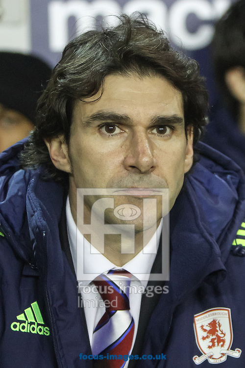 Picture by Daniel Chesterton/Focus Images Ltd +44 7966 018899<br /> 21/12/2013<br /> Middlesbrough manager Aitor Karanka during the Sky Bet Championship match at The Den, London.