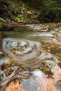 Upper Priest River, Selkirk Mountains, Idaho.