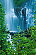Lower Proxy Falls, Three Sisters Wilderness, Cascade Mountains, Oregon.