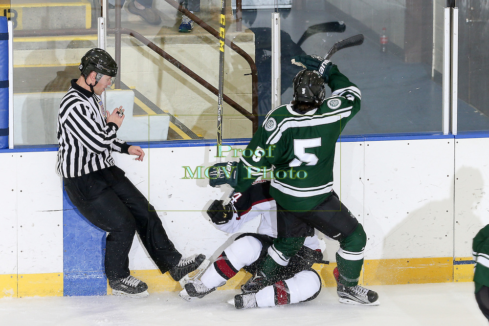 Delbarton Green Wave Ice Hockey 2016 at Mennen