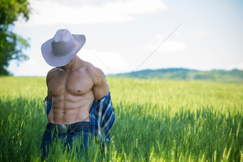 muscular cowboy removing his shirt in a field