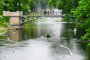 Rowboat in the Canal in Bastejkalna park, Riga, Latvia