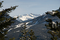 Whistler Mountain as seen from the Flank Trail on a clear winter day.