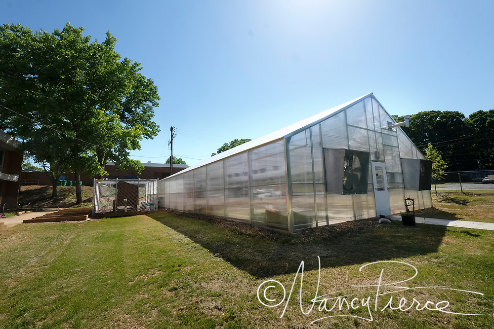 These pictures were taken at JT Williams Secondary Montessori School.  This is the greenhouse for the Agricultural Science pathway. Teacher is Katherine Pair. (not shown)