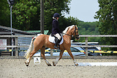 07 - 22nd May - Unaffiliated Dressage
