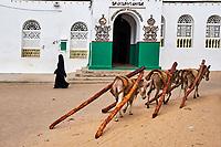 Kenya, archipel de Lamu, ville de Lamu patrimoine mondial de l'Unesco, mosquée Riyadha // Kenya, Lamu island, Lamu town, Unesco world heritage, Riyadha mosque