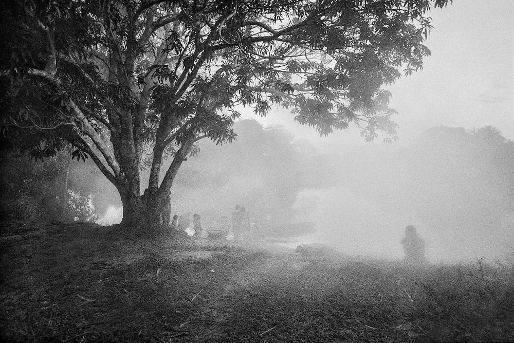 Brazil, Laje Velho, Peuple Oro Wari, Rondonia.<br /> <br /> <br /> Les contacts entre indiens et colons remontent aux annees 40 dans le Rondonia mais pour certains peuples, le contact avec la societe bresilienne remonte a une dizaine d'annees, d'autres ne sont toujours pas decouverts.<br /> L'application de la constitution bresilienne de 1988 qui garantie a chaque peuple la demarcation de sa terre traditionnelle se heurte a l'occupation des sols par les colons et pose le probleme de la reconnaissance identitaire.<br /> L'autonomie des peuples indigenes connait un nouvel essor avec la resurgence d'ethnies considerees disparues. A Laje Velho, un clan s'est reforme pour reinvestir une terre ancestrale.<br /> Il reste 9 peuples sans contact dans l&rsquo;etat du Rondonia.