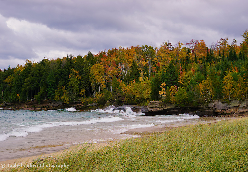 &quot;Autumn Winds&quot;<br />
