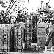 Au port d'Agadir, dans la section réservée à la pêche côtière, un ouvrier s'apprête à embarquer des caisses à bord d'un sardinier. Comme beaucoup de ses compagnons d'infortunes, son salaire ne dépasse pas les 2000 dirhams par mois. « Sur les bateaux de la pêche hauturière, on ne me donnait même pas à boire et la nourriture distribuée à bord du bateau était périmée. C'est une vie de misère et le code du travail n'est jamais respecté », explique-t-il. Son rêve ? Embarquer sur les navires espagnols qui ont conclut des accords avec le Maroc. Des bateaux étrangers qui paient, selon ses dires, la main d'œuvre marocaine, jusqu'à 20000 dirhams par mois, avec une couverture sociale et un service de soins médicaux en mer, en cas d'accident.