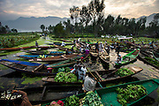11th October 2013, Floating vegetable market on the Dal Lake in Srinagar, Kashmir on the 11th October 2013<br /> <br /> PHOTOGRAPH BY AND COPYRIGHT OF SIMON DE TREY-WHITE<br /> <br /> + 91 98103 99809<br /> <br /> email: simon@simondetreywhite.com photographer in delhi