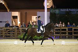 Visser Tommie, (NED), Bojengel<br /> Int I Freestyle Test<br /> CDI 4* Azelhof Lier 2015<br /> © Hippo Foto - Leanjo de Koster