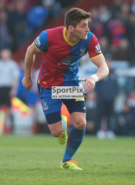 Jo Shields Crystal Palace v Southampton Premiership  Premiership 8/3/2014 (c) Steve Ball|/Sportpix.org.uk(c) Steve Ball| SportPix.org.uk